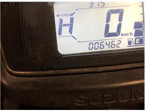 Suzuki LT-A500 XPL9 2019